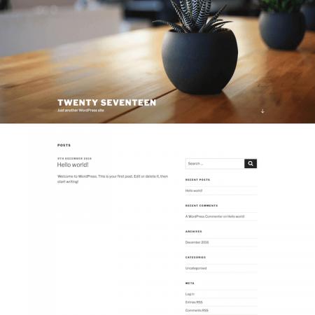 Template WordPress Twenty Seventeen