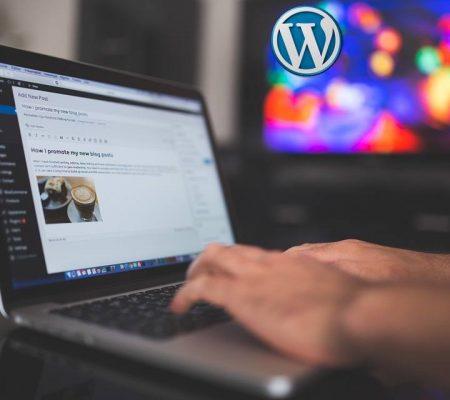 Premiers Pas sur WordPress