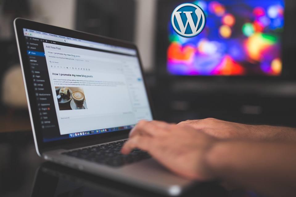 wordpress premiers pas